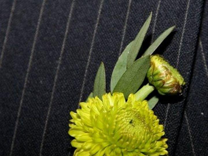 Tmx 1256744985258 APS00269 New Smyrna Beach, Florida wedding florist