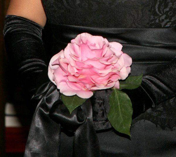 Tmx 1256745010586 APS00091 New Smyrna Beach, Florida wedding florist