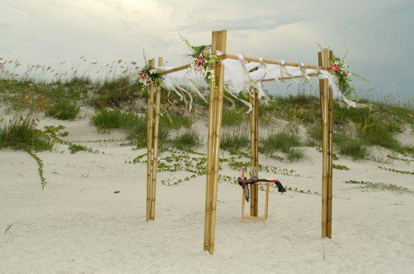 Tmx 1256745524383 APS00078 New Smyrna Beach, Florida wedding florist