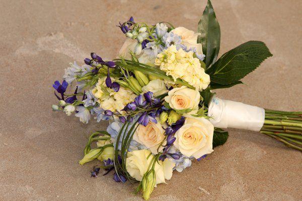 Tmx 1256746023133 APS00157 New Smyrna Beach, Florida wedding florist