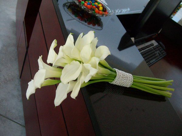 Tmx 1310069236516 ALIM4199 New Smyrna Beach, Florida wedding florist