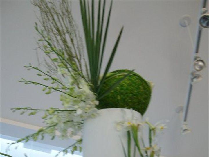 Tmx 1310069450141 ALIM4185 New Smyrna Beach, Florida wedding florist