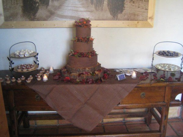 Tree trunk cake with truffle buffet