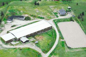 360 Horse Ranch