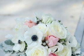 Sea of Blossoms