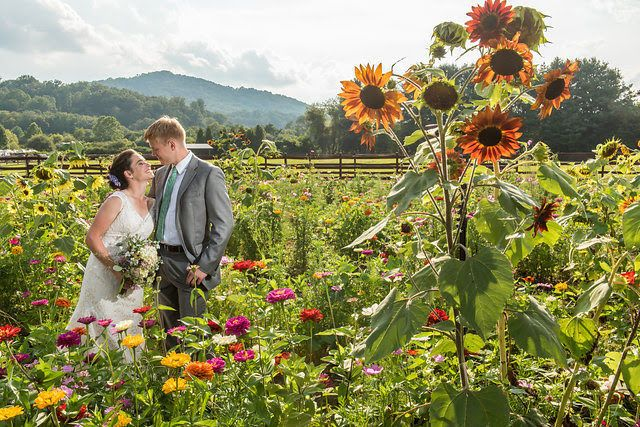 Tmx 1518208990 47e7205fb4684403 1518208988 511a3f55bb68a5cf 1518208987048 5 August Asheville, NC wedding venue