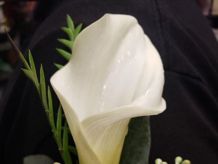 Tmx 20191024 1406461 51 1075815 159681824987472 Dallas, TX wedding florist