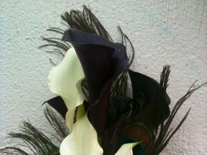 Tmx Img 0017 51 1075815 159681998913500 Dallas, TX wedding florist