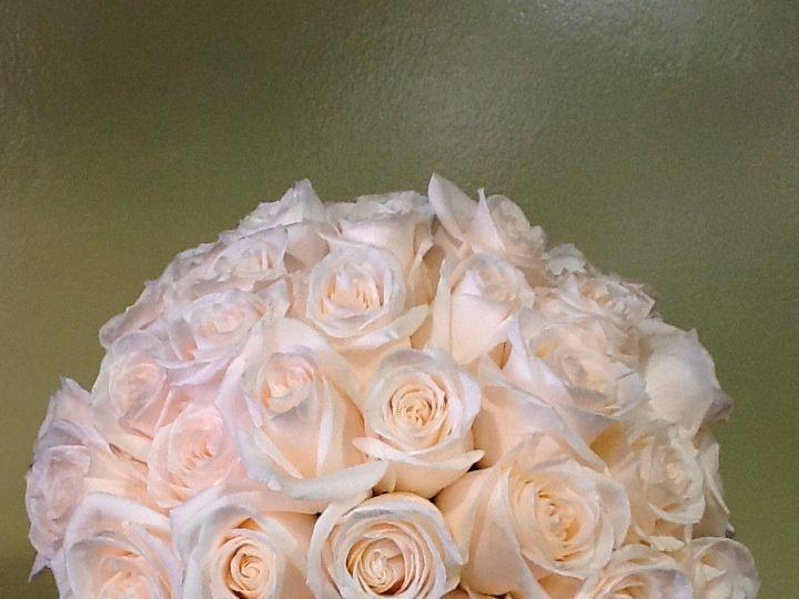 Tmx Img 0071 51 1075815 159681963994799 Dallas, TX wedding florist