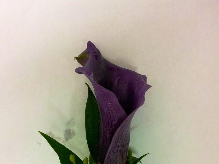 Tmx Photo 21 51 1075815 1563848222 Dallas, TX wedding florist