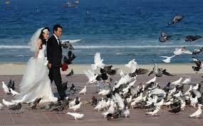 2018 wedding ocean city md
