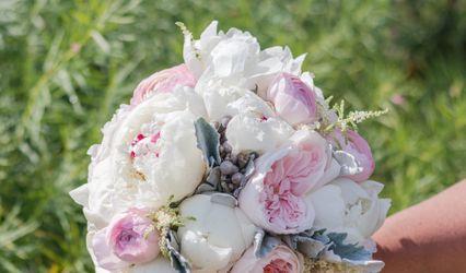 Genesis Floral 1