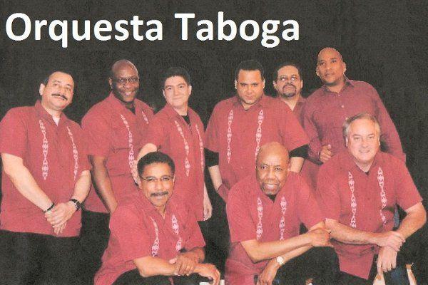 Tabogaprofile1