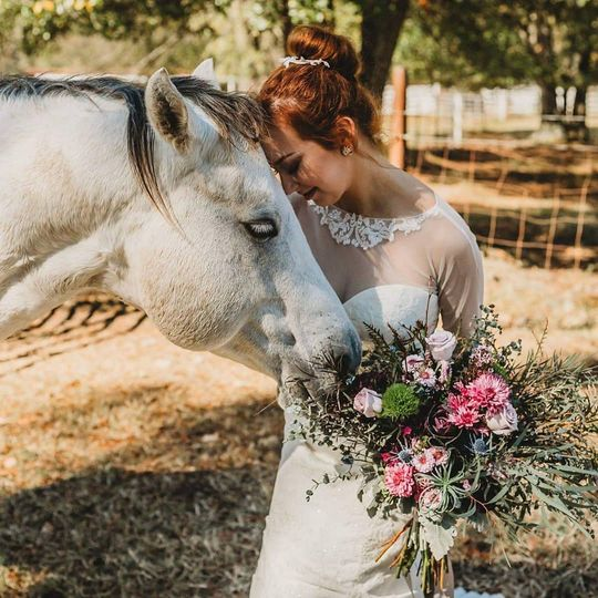 Beautiful bride and horse