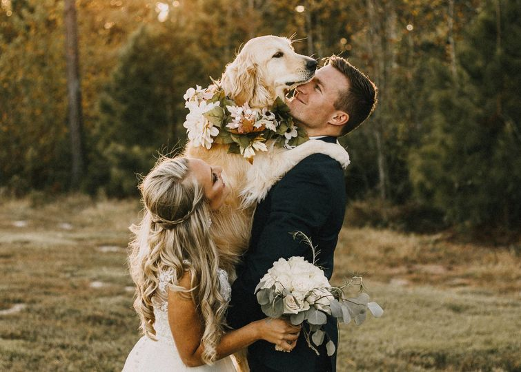 Golden retriever love!