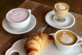 Tree House Craft Coffee & Frozen Yogurt