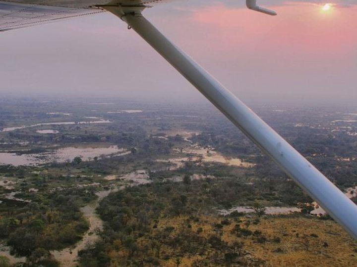 Tmx 1450620974064 Okavango Alexandria wedding travel