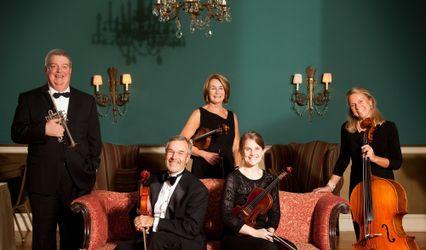 Maxwell String Ensemble