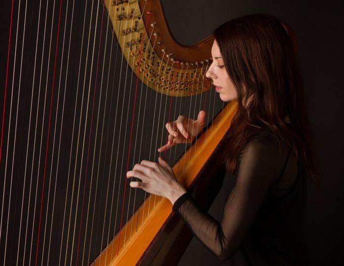 Salvi diana harp