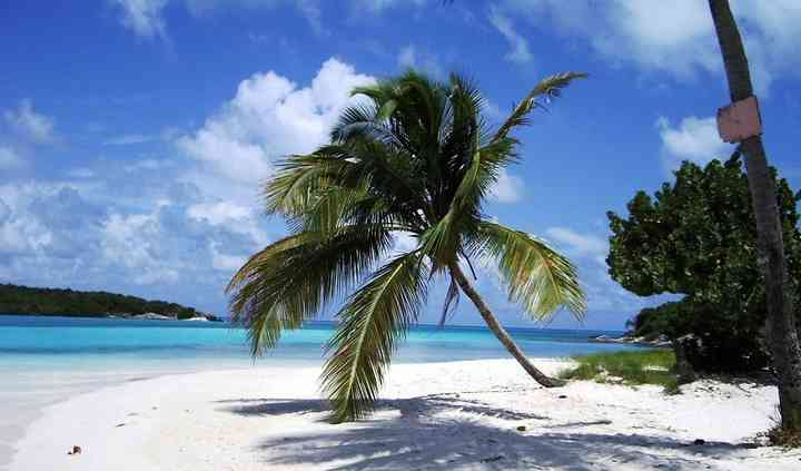 Island Dreams Travel