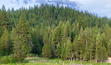 Longhorn Guest Ranch