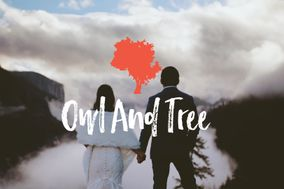 Owl & Tree Wedding Films