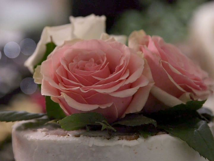 Tmx Screen Shot 2020 05 23 At 1 35 24 Pm 51 1074125 159025716165476 Richmond, VA wedding videography
