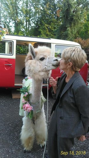 Loretta Rossini Llama Kiss