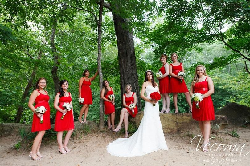 800x800 1416667714557 bride and bridesmaids