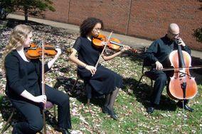 Robyn James Ensembles