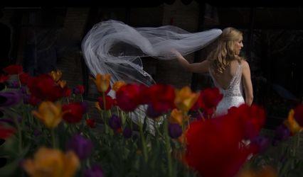 Stela Zaharieva Photography 1