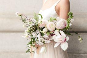 Succulents & Saffron