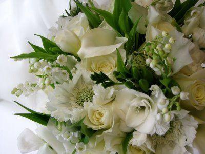 Tmx 1255985757546 Leslieswedding1 Orlando, Florida wedding florist