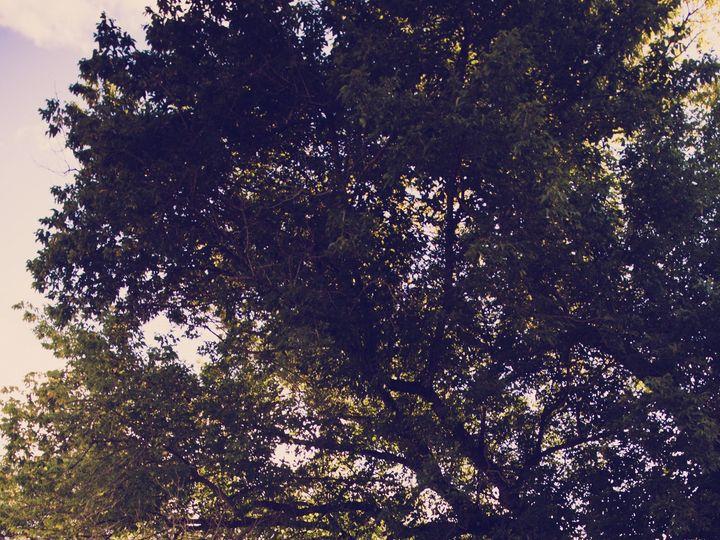 Tmx 1426267859924 Img8607 Mechanicsburg, PA wedding photography
