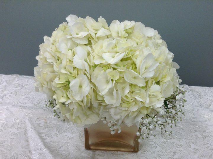 Tmx C40cdbae C1d2 49ca 8f57 53e5e156872b 51 1733325 159952099314202 Paxinos, PA wedding florist