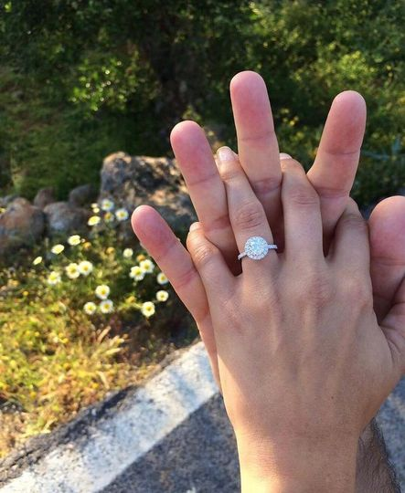 1000's of Proposals a year