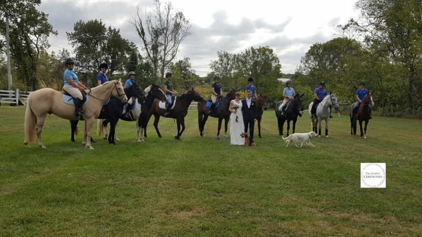 Horses at the wedding ceremony