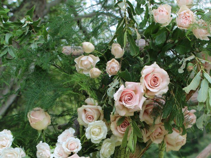 Tmx 1468528927800 Img0559 Duxbury, MA wedding florist