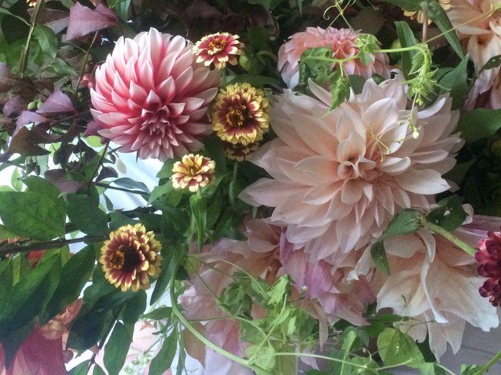 Tmx 1468528986157 Img7486 1 Duxbury, MA wedding florist