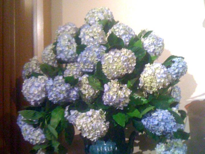 Tmx 1397856256288 Img418 Pearl wedding florist