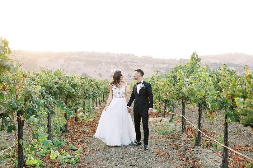 A stroll through the Chardonnay vineyard