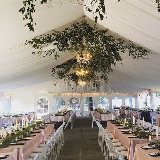 Reception tent setup and design