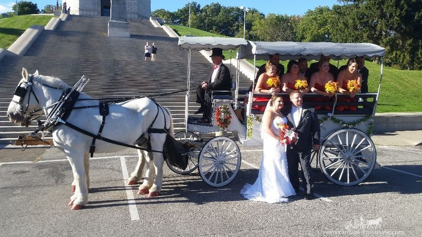 Limousine Carriage