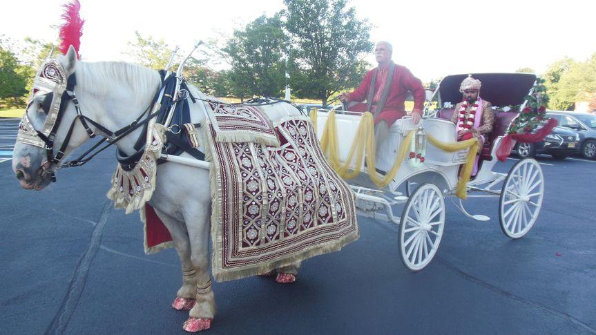 Indian Baraat Carriage