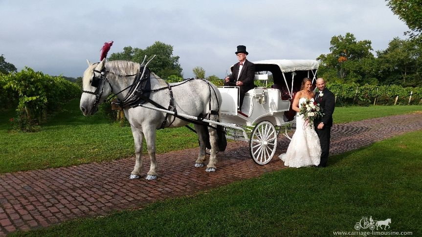 horse drawn victorian carriage 123 51 63825