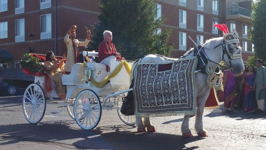 Indian Wedding Carriage