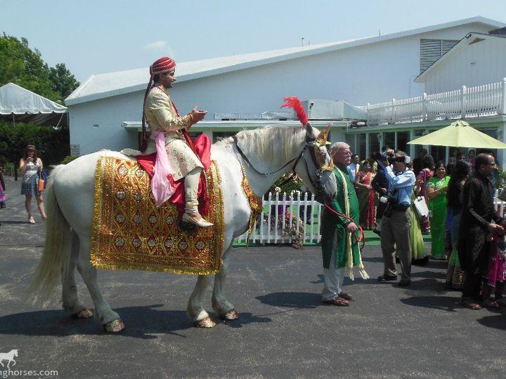 Tmx 1430798985558 Indianbaraathorse085 Wellsville, OH wedding transportation