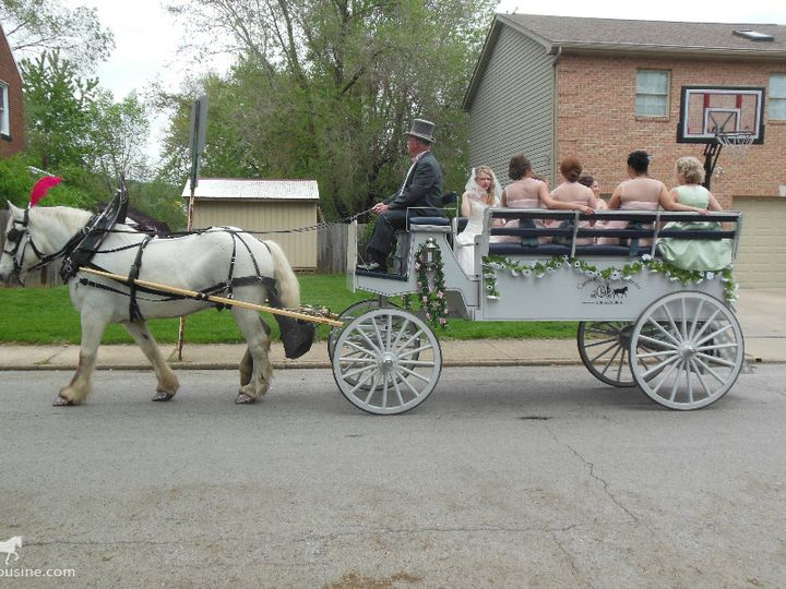 Tmx 1430799036828 Horsedrawnlimousinecarriage060 Wellsville, Ohio wedding transportation