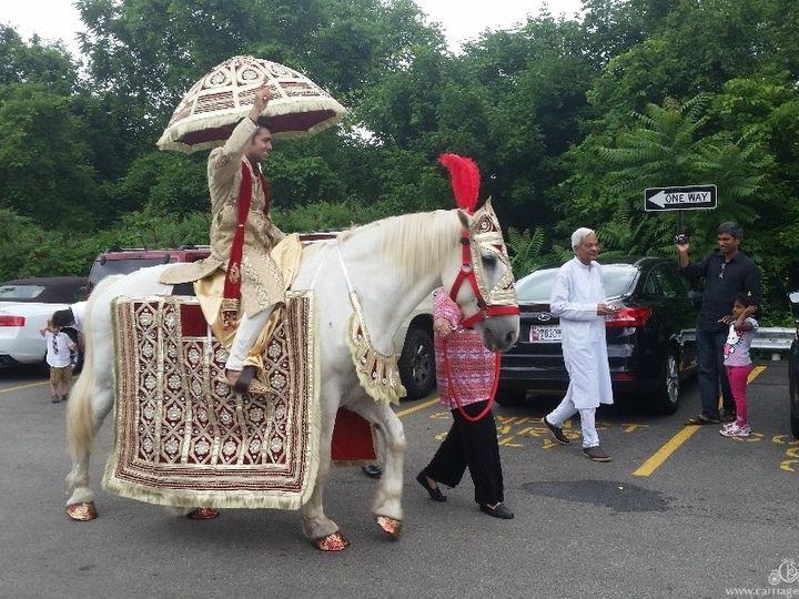 Tmx 1477284676357 Baraatweddinghorse004 Wellsville, OH wedding transportation