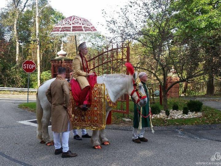 Tmx Baraat Horse 087 51 63825 Wellsville, OH wedding transportation